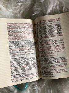 Bible Review NIV Artisan Collection Bible for Girls Image 5 #biblesforgirls #biblereview #biblesforteenagers #journalingbibles #bibleartjournaling #journalingartbibles #bibleart #biblejournaling #bibleartjournaling #bibleartjournalingforgirls